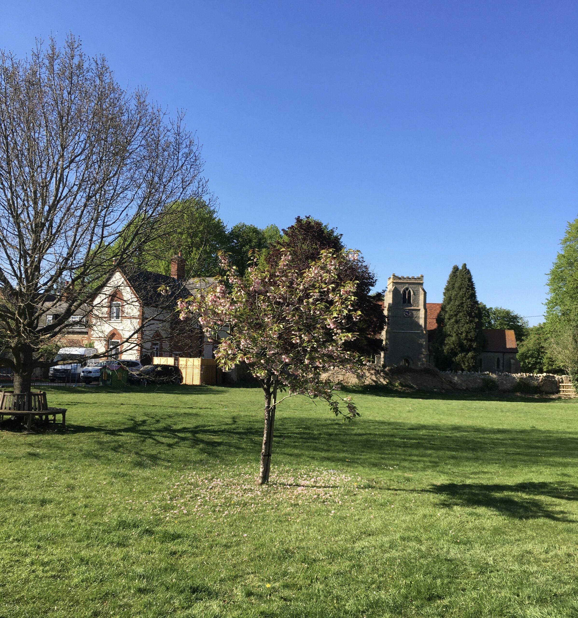 Towersey Village Green